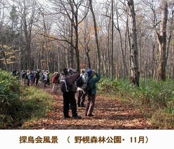 写真「探鳥会風景(野幌森林公園)」